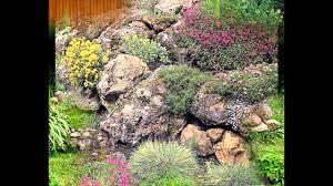 garden ideas plants for rock gardens youtube