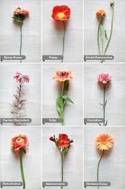 wedding flowers guide orange wedding flower guide orange flowers flower and orange