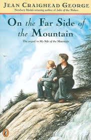 the other side of the mountain on the far side of the mountain by jean craighead george scholastic