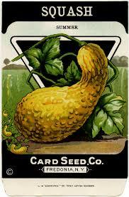 vintage seed packets free vintage clip squash seed packet design shop