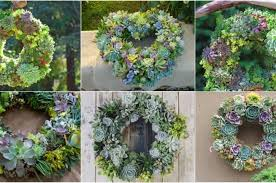 the best ideas for a diy succulent wreath for your garden step by
