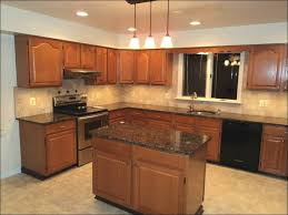 Modular Kitchen Design For Small Kitchen Kitchen Small Kitchen Designs Photo Gallery Small Kitchen