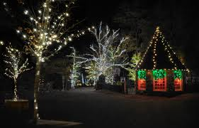Rock City Garden Of Lights Rock City S Enchanted Garden Of Lights