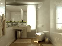 Great Ideas For Small Bathrooms Great Traditional Small Bathroom Ideas With Designs Farmhouse