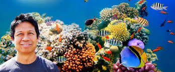 aquariumania aquarium fish how craig watson s obsession