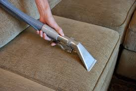 professional upholstery cleaning in jupiter and palm gardens