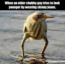 Crazy Bird Meme - funny pictures of the day 34 pics funny pictures pinterest