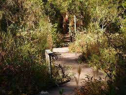 Botanical Gardens In Nc by Three Reasons To Visit The North Carolina Botanical Garden