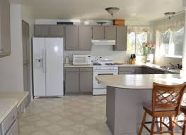 Buy Kitchen Furniture Online by Astonishing Factory Direct Kitchen Cabinets Tags Cheapest Place