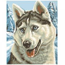 kids painting by numbers husky schipper from craftyarts co uk uk