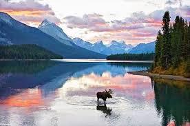 Alaska scenery images Mike beth 39 s alaskan adventure jpg