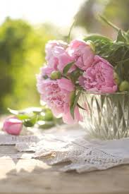Shabby Flowers 858 Best Flowers Images On Pinterest Flowers Floral