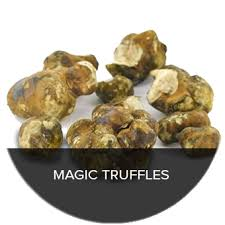 where to buy truffles online magic mushrooms buy our truffles and grow kits online