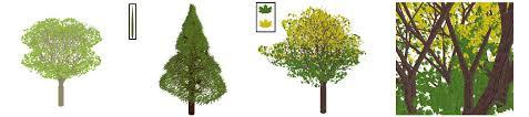 gpu trees jpg