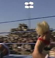 Torrie Wilson Thong - must see gifs of torrie wilson stripping to a thong in wwe daily