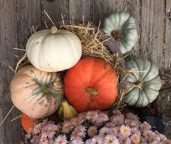 51 things to do thanksgiving week in columbus