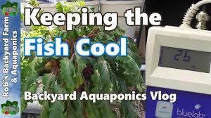 diy backyard aquaponics pond system images on wonderful backyard