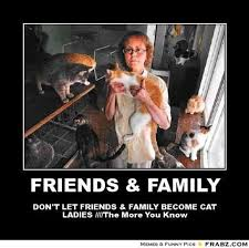 Crazy Dog Lady Meme - th id oip m4hg4cxucvpmym wvho0gghahw