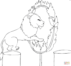lion jumps fire coloring free printable coloring pages