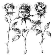 long stem rose tattoo collection 37