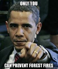 Only You Can Prevent Forest Fires Meme - only you can prevent forest fires angry obama make a meme