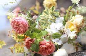 native plants portland oregon summer hart floral