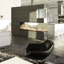 gas fireplace contemporary closed hearth 3 sided space