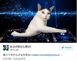 Dj Meme - dj stuck cat stuck cat know your meme