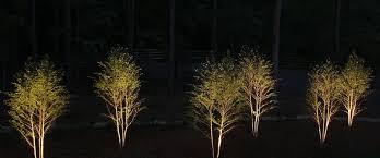 Landscape Lighting Atlanta - atlanta landscape lighting nightvision