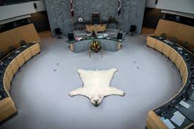 free stock photo of polar bear rug in the congress room in