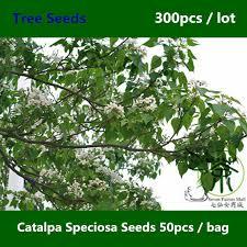 get cheap western tree ornaments aliexpress alibaba