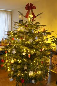 real christmas trees collection real decorated christmas tree pictures home design