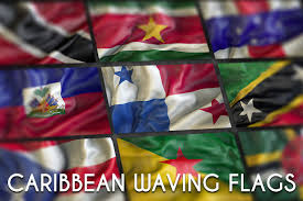 Flags For Sale South Africa Caribbean Waving Flags Illustrations Creative Market