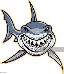 shark attacker vector art getty images