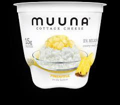 Cottage Cheese Singles by Products U2013 Muuna Com