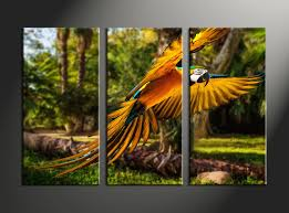 parrot home decor 3 piece colorful parrot canvas art