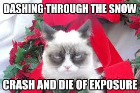 Grumpy Cat Snow Meme - funny for dashing through funny www funnyton com