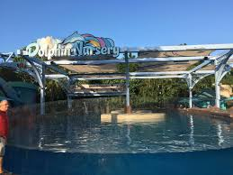 Sea World Orlando Map by Behind The Thrills Seaworld Orlando Reopens Their Dolphin