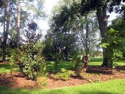 bird friendly native plants audubon seven things landscape design professionals can do for birds