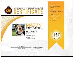 american eskimo dog giving birth amazon com dna my dog canine breed identification test kit