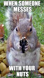 Squirrel Meme - when someone messes with your nuts when someone messes with your