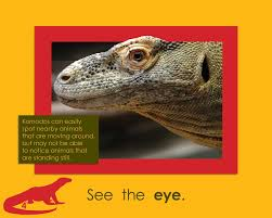 komodo dragons trace taylor 9781634376730