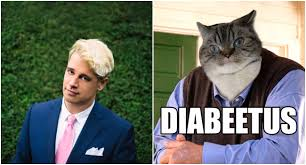 diabeetus cat posters at uc berkeley trigger fat feminists and