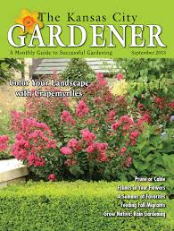 product display native plants of the midwest by alan branhagen kcg 7jul16 by the kansas city gardener issuu
