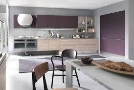 cuisine couleur bois design interieur couleur cuisine peinture murale grise armoires