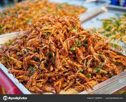 insecte cuisine cuisine asiatique exotique insectes frits en condition lège chaude