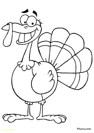 coloring pages of turkeys fortune picture of a turkey to color coloring pages turkeys page
