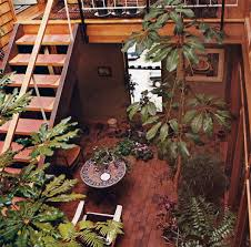 41 best living with plants in the 70s images on pinterest 70 u0027s