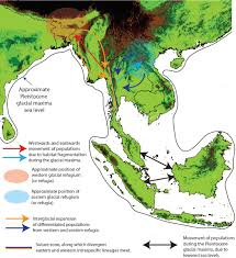 Southeastern Asia Map by Understanding Anopheles Diversity In Southeast Asia And Its
