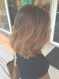 best 25 long bob hairstyles 15 inspirations of long bob hairstyles with layers